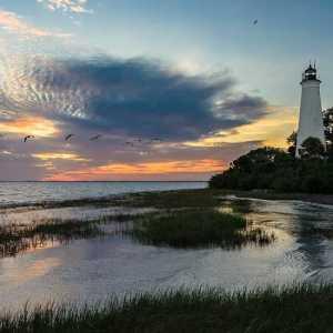 St Marks National Wildlife Refuge Florida